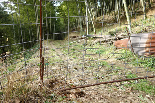 イノシシ避けの柵