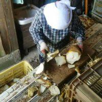 たけのこ最盛期!八女農園メンバーは毎日元気にたけのこを収穫しています
